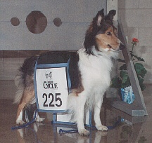 Megan at the 1993 Cycle Eastern Regional Obedience Championship