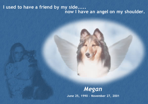 I used to have a friend by my side...now I have an angel on my shoulder.